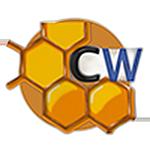 Logo Diseño web Madrid y SEO Colmena-web