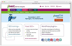 plugins Yoast SEO. 10-MEJORES-plugins-Wordpress-Colmena-web